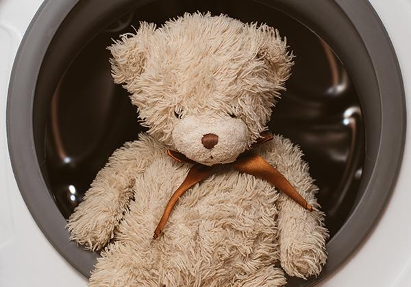 laundering the teddy bear